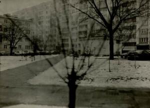 зима-весна 2008