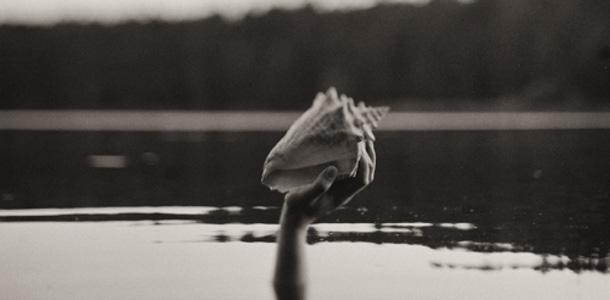 «Сад». Выставка фотографий Максима Шумилина и Михаила Лещенко