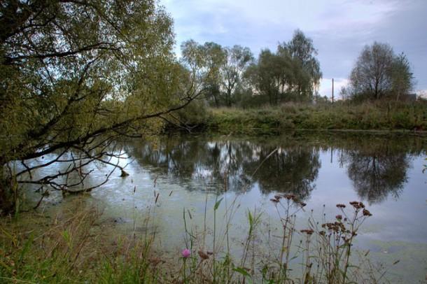 Усадьба Мелихово, пруд